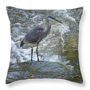 Great Blue Heron Standing In Stream Throw Pillow