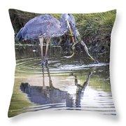 Great Blue Heron Vs Huge Frog Throw Pillow