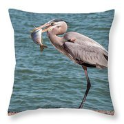 Great Blue Heron Walking With Fish #2 Throw Pillow