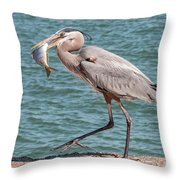 Great Blue Heron Walking With Fish #4 Throw Pillow