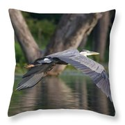 Great Blue In Flight Throw Pillow