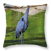 Great Blue Wading The Tuck Throw Pillow