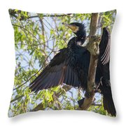 Great Cormorant - High In The Tree Throw Pillow