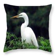 Great Egret 19 Throw Pillow