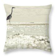 Great Egret Aka Great White Grey Heron In Maldives Throw Pillow