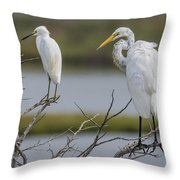 Great Egret And Snowy Egret Perched Throw Pillow