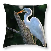 Great Egret At Rest Throw Pillow