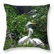 Great Egret Chicks 2 Throw Pillow