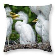 Great Egret Chicks Throw Pillow