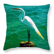 Great Egret Emerald Sea Throw Pillow