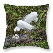Great Egret Family Throw Pillow