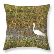 Great Egret Fishing Throw Pillow