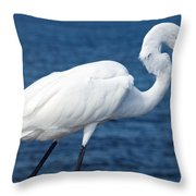 Great Egret  In Florida Throw Pillow