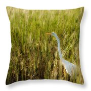 Great Egret In The Morning Dew Throw Pillow