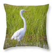 Great Egret In The Spring  Throw Pillow