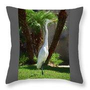 Great Egret Just Strutting Impressionism 1 Throw Pillow