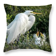 Great Egret Mom And Babies Throw Pillow