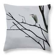 Great Egret On High Throw Pillow