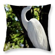 Great Egret Up Close Throw Pillow