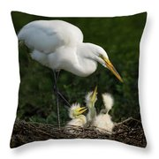 Great Egret With Chicks Throw Pillow