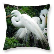 Great Egrets 10 Throw Pillow
