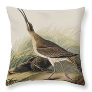 Great Esquimaux Curlew Throw Pillow