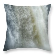 Great Falls Of Paterson Nj Throw Pillow