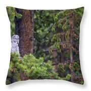 Great Gray Owl Perched Throw Pillow