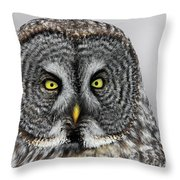 Great Gray Owl Portrait Throw Pillow