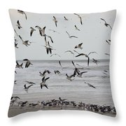 Great Gull Group On The Beach Throw Pillow