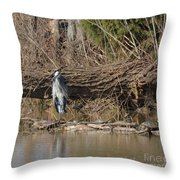 Great Heron And Turtles  Throw Pillow