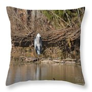 Great Heron Turtles And Grebe Duck  Throw Pillow