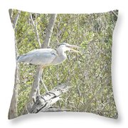 Great Heron With Mouth Open Throw Pillow