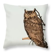 Great Horned Owl At Dusk Throw Pillow