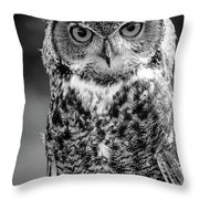 Great Horned Owl Bw IIi Throw Pillow