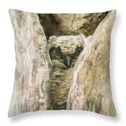 Great Horned Owl Chick Throw Pillow