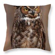 Great Horned Owl Digital Oil Throw Pillow