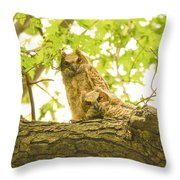 Great Horned Owl Fledglings Throw Pillow