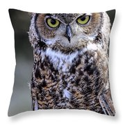 Great Horned Owl IIi Throw Pillow
