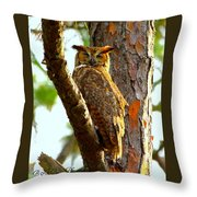 Great Horned Owl Wink Throw Pillow