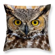 Great Horned Stare Throw Pillow