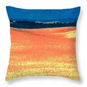Great Lakes Dunes B Throw Pillow