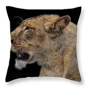 Great Lioness Throw Pillow