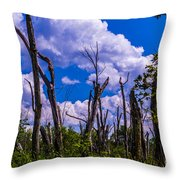 Great Meadow Throw Pillow