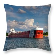 Great Republic Shines Throw Pillow by Fran Riley