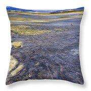 Great Salt Lake Basin Throw Pillow