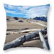 Great Sand Dunes National Park Driftwood Landscape Throw Pillow