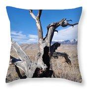 Great Sand Dunes National Park Fallen Tree Portrait Throw Pillow