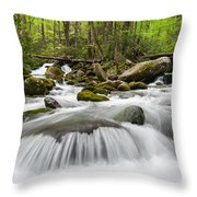 Great Smoky Mountain Roaring Fork Spring Cascade Throw Pillow by Mark VanDyke