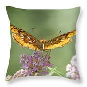 Great Spangled Fritillary Butterfly Throw Pillow